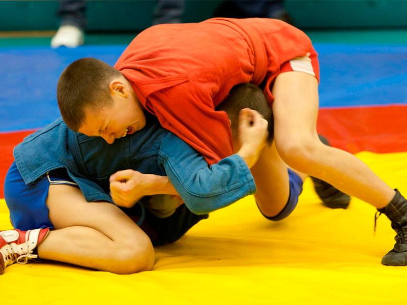 О проведении Областных соревнований обучающихся по борьбе самбо среди д/ю 2002-2003 г.р.