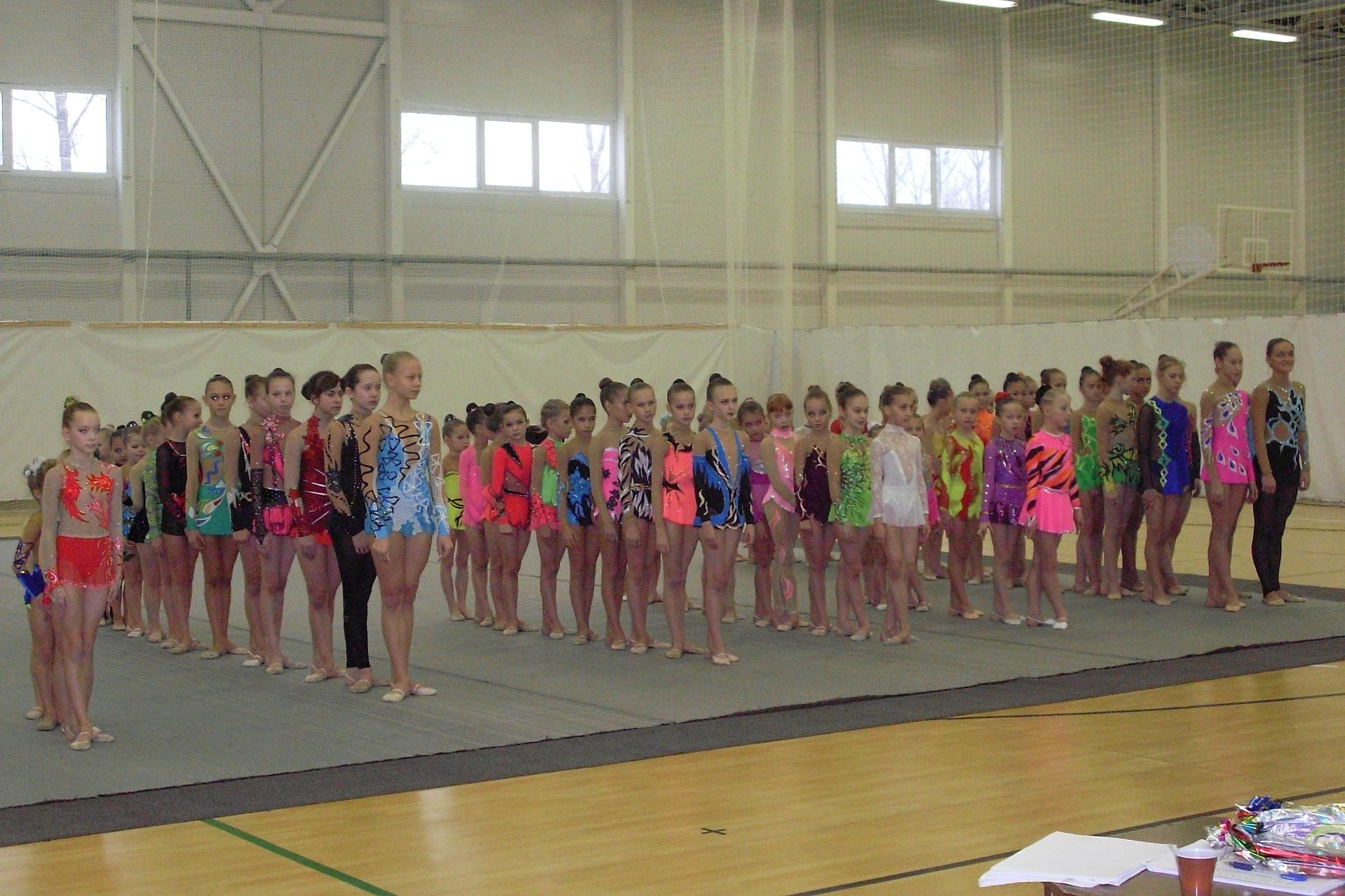 Первенство Ленинградской области среди юных гимнасток