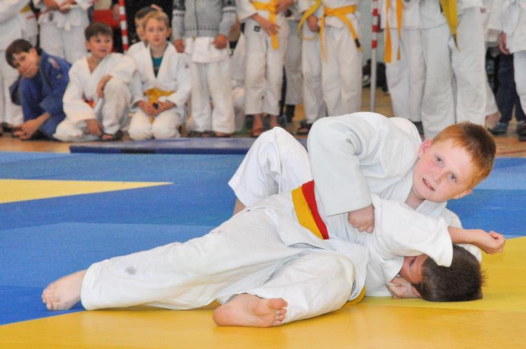 Областные спортивные соревнования среди обучающихся по дзюдо среди юношей и девушек