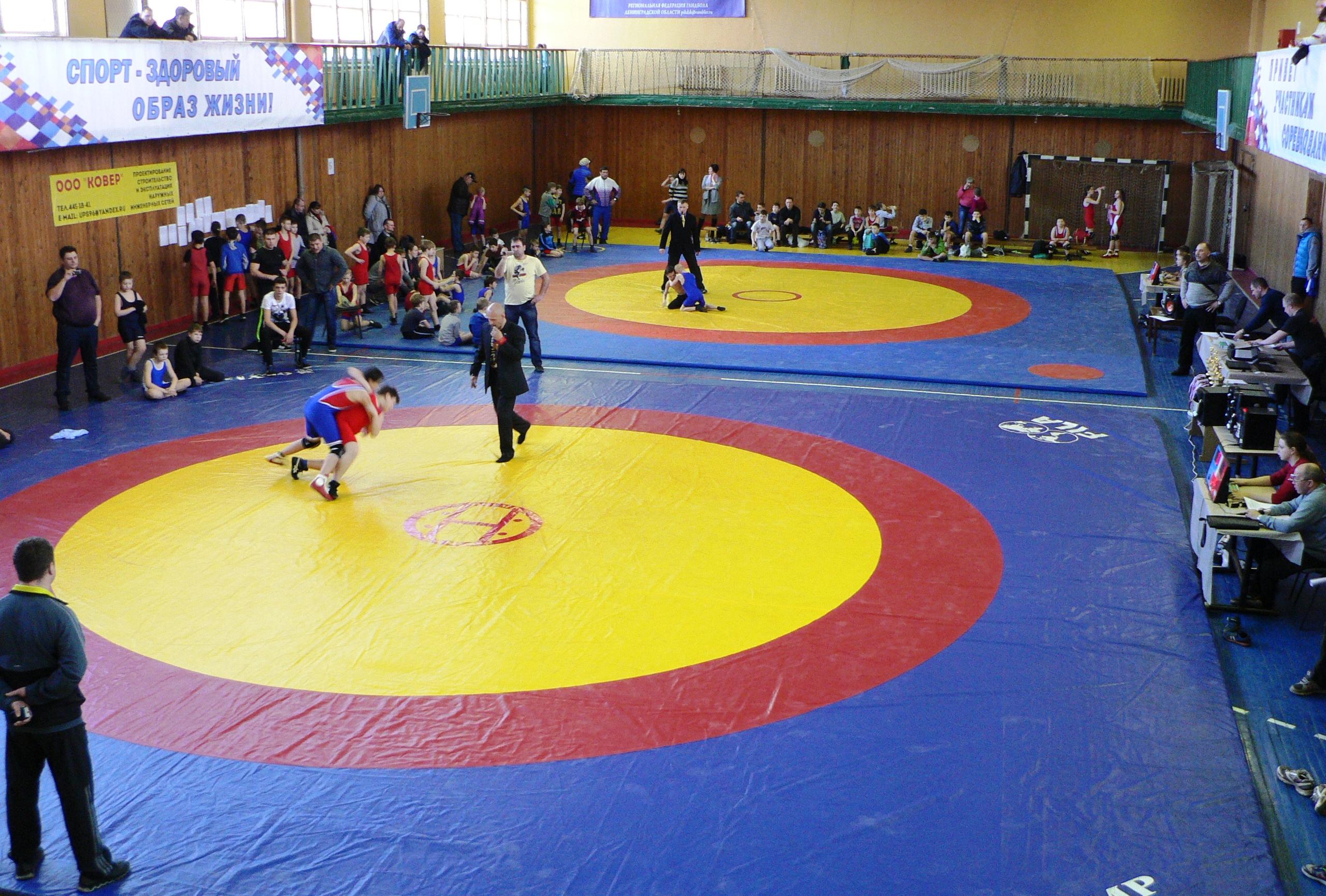 Областные соревнования среди обучающихся по вольной борьбе