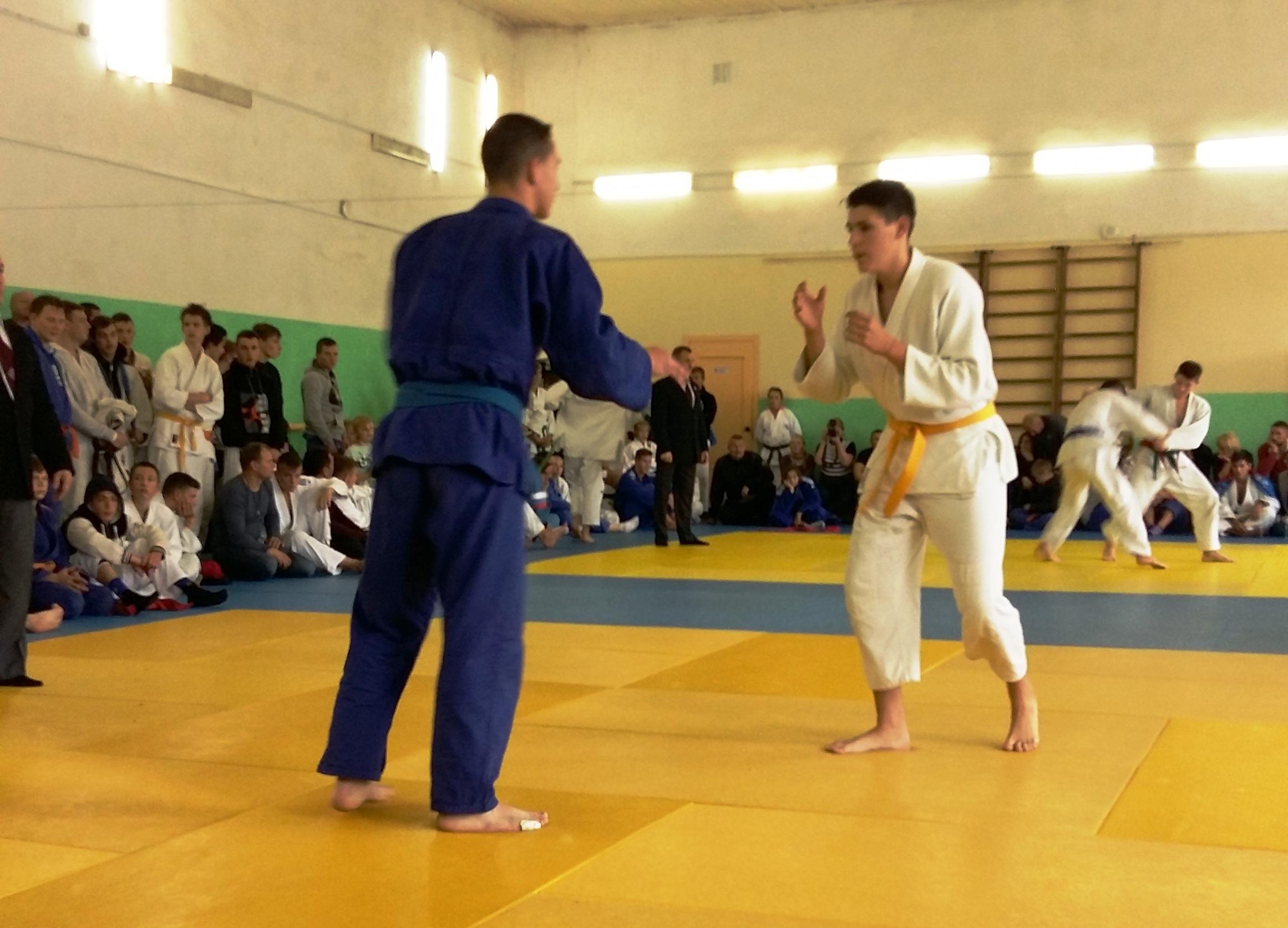 Областные спортивные соревнования  по дзюдо